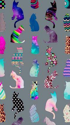 Imagem de cat, wallpaper, and background