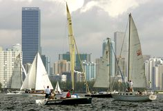 Curious topic columbus day regatta miami 2012 opinion