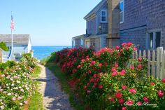 """""""The Way to the Beach"""" in the east end of Provincetown By Allan MacKinnon, Photographer's Guild of Cape Cod"""