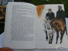 Divoký koník Ryn, Autor: Říha, Bohumil, Ilustrátor: Mirko Hanák
