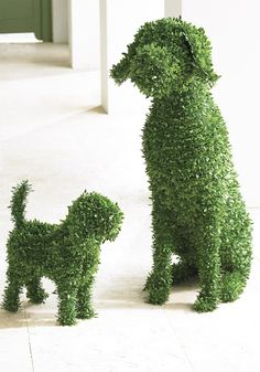You don't need a country estate or master gardener to enjoy the everlasting charm of our Moxie Faux Boxwood Garden Dog. She doesn't require grooming or water, and never barks! A simple and playful way to fetch smile after smile in the garden, at an entryway, or nearly anywhere in your landscape.