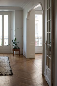 One of my favorite home tours: a beautiful apartment in the heart of Paris. The natural lighting and those herringbone floors. French Apartment, Dream Apartment, Apartment Interior, Apartment Design, Paris Apartment Decor, European Apartment, Apartment Lighting, Apartment Bedrooms, Paris Decor