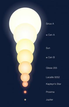 The relative sizes of a number of objects, including the three (known) members of Alpha Centauri triple star system Astronomy Facts, Astronomy Science, Space And Astronomy, Earth Science, Science And Nature, Life Science, Space Planets, Sistema Solar, Cosmos