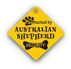 Australian Shepherd Security