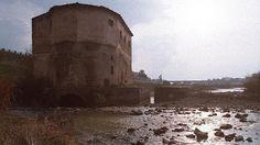 Patrimonio Industrial Arquitectónico: Visitas guiadas programadas de los molinos de Mart...