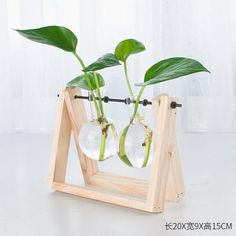 Decorative Wooden Vase With Wooden Tray House Plants Decor, Plant Decor, Hydroponic Farming, Diy Hydroponics, Diy Plant Stand, Wooden Vase, Popular Woodworking, Glass Containers, Garden Furniture