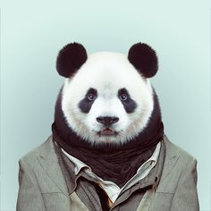 Zoo Portraits – Animals Dressed Like Humans