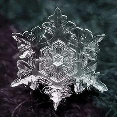とってもキレイ♪ 『雪の結晶』 - Heart Attack