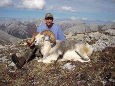 Stone Sheep - Big Game Hunting - Hunting Trips - findmeahunt.com