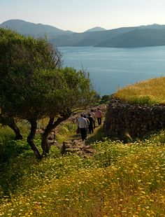 VISIT GREECE  Hiking, in Milos island is a unique experience on springtime!