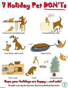 Holiday pet don'ts