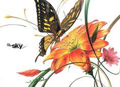 대세‼️스카이미술학원🌈🌈 로쌤의 시범작!!🌻🌺🦋🦋 경희대 실기대회주제 #경희대실기대회 #경희대기초디자인 #꽃기초디자인 #나비기초디자인 #자연물기촏자인 #스카이미술학원 #강동구미술학원스카이 #강남구미술학원 #강남미술학원스카이 #광주미술학원… Marker Art, Vintage Art, Rooster, Art Drawings, Digital Art, Objects, Collage, Butterfly, Watercolor