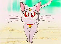 Diana Sailor Moon, Princesa Serenity, Sailor Moon Screencaps, Anime Shows, Sonic The Hedgehog, Fictional Characters, Universe, Art, Seasons