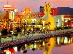 Best-Orlando-Nighttime-Spots-Downtown-Disney-big.jpg