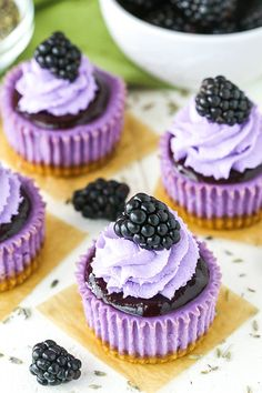 cheesecakes These Mini Blackberry Lavender Cheesecakes are made with lavender cheesecake, blackberry topping, whipped cream and a fresh blackberry on top! Don't let these little treats fo Blackberry Cheesecake, Mini Cheesecake Recipes, Mini Desserts, Dessert Recipes, Cheesecake Cupcakes, Eclairs, Mini Cakes, Cupcake Cakes, Pecan Cake
