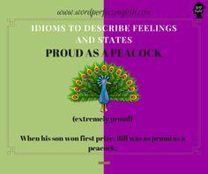 TumblrImprove your vocabulary and learn new idioms! :) #learningenglish #englishidioms #englishphrases #wordperfectenglish