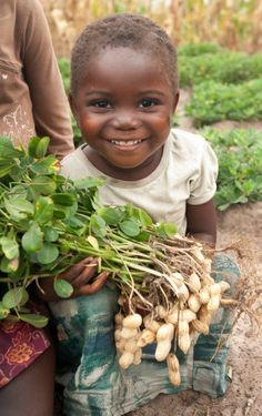 Three-year-old Agnes Kape with peanuts from a farm that Concern is supporting in Zambia.