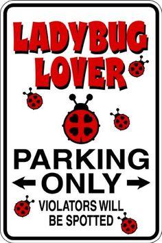Design With Vinyl Design 621 Ladybug Lover Vinyl 9 X 18 Wall Decal Sticker Design with Vinyl http://www.amazon.com/dp/B00EVTD5YO/ref=cm_sw_r_pi_dp_.5V4tb0YD2APE