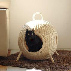 FLAVOR キャットハウス | 犬や猫と暮らす人のライフスタイルショップ we