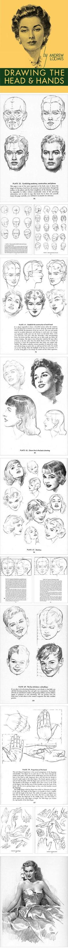 Lines and Colors: a blog about drawing, painting, illustration, comics, concept art and other visual arts » Drawing the Head and Hands, Andrew Loomis via PinCG.com