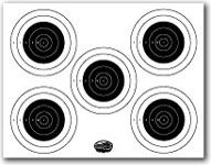 Printable Shooting Targets and Gun Targets LOVE THIS there are several others!