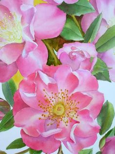How to paint a Rose? Pink Rose Watercolor Painting - Art Lesson - by Doris Joa