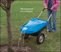 Great way to tote water to your plants