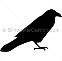 Raven silhouette clip art. Download free versions of the image in EPS, JPG, PDF, PNG, and SVG formats at http://silhouettegarden.com/download/raven-silhouette/