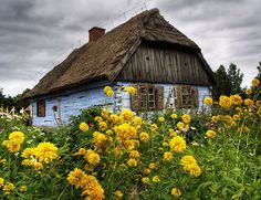 What To Do In Ukrainian Carpathian Mountains tour – Best Day trips from Lviv – Travel With Me 24 X 7 Beautiful Homes, Beautiful Places, Cool Pictures, Beautiful Pictures, Carpathian Mountains, Northern Italy, Architecture Old, Cottage Homes, Countries Of The World