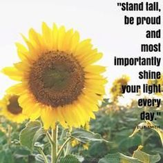 Quote stand tall be proud by Elle Smith Quotes For Him, Daily Quotes, Stand Tall Quotes, Proud Quotes, Insprational Quotes, Ugly Animals, Fairy Tales For Kids, Shine Your Light, Motivational Words