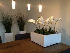 Hoogglans witte bak royaal gevuld met zijden orchideeën (op de achtergrond mummiegras)