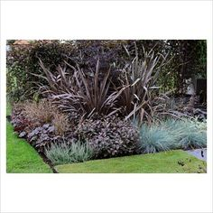 Dark foliage planting of Phormium atropurpureum with Heuchera and Festuca - RHS Tatton Park Flower Show 2010