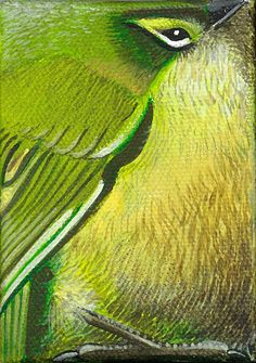 """Rock Wren 3.5""""x2.5"""" Acrylic on canvas...if anyone knows the artist, please let me know..."""