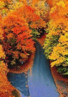 Colors of Autumn, Vermont