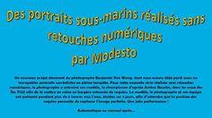 Diaporamas gratuits chez kamdou: PPS Des portraits sous-marins réalisés sans retouc...