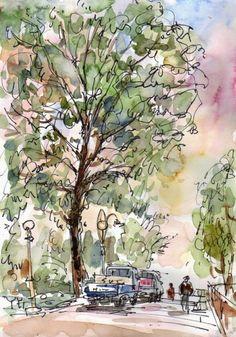 Urban Sketchers - Pin Oak Tree in Son gi-jeong Memorial Park, Malli-dong, Seoul