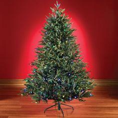 3466579cd2d Christmas Trees. Hammacher SchlemmerChristmas ...