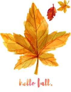 Now that fall is here everyone thinks about pumpkin, gratitude and family. Our Thankful and Gratitude Free Watercolor Printables are a great reminder. Planner Stickers, Maple Leaf, Fall Inspiration, Fall Is Here, Happy Fall Y'all, Hello Autumn, Fall Season, Fall Crafts, Fall Halloween