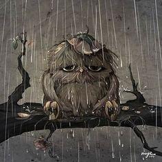 "Raining, Owl / Pioggia, Gufo - Art by Mei Yee (myelim on deviantART), ""Jose"" Owl Illustration, Owl Pictures, Beautiful Owl, Wise Owl, Owl Bird, Jolie Photo, Cute Art, Painting & Drawing, Fantasy Art"