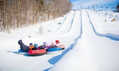 Nestled in the beautiful Oak Ridges Moraine, less than 70 kilometres from downtown Toronto, this resort offers a year-round fun for everyone Snowboarding, Skiing, Friday Day, Greater Toronto Area, Downtown Toronto, Trail Maps, Booklet, Vip, Coupons