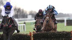 Aso reigns Supreme at Haydock - Horse Racing - Erupt Sports