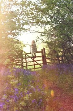 Bluebells & Old Fences Country Life, Country Living, Country Roads, Country Charm, Lifestyle Fotografie, Vie Simple, Into The West, Old Fences, Anne Of Green Gables