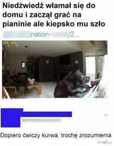 Memy i śmieszne obrazki z głownej - strona 43262 - KWEJK.pl