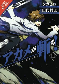 Akame Ga Kill Vol 11 GN