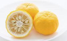 New: Yuzu puree, a trendy, delicate and intense citrus fruit
