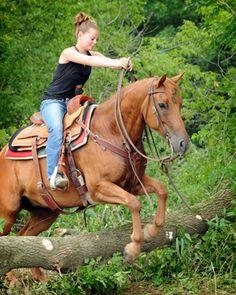 AQHA Trail Obstacle course Challenge Iv always wanted to do this at least even not competitively