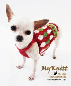 Christmas fashion dog harness diy handmade crocheted by myknitt. Check all of our collections at www.myknitt.com .Red green and white houndstooth pattern. #diy #christmas #pets #chihuahua #houndstooth #handmade #myknitt