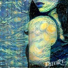 Starry shoulder
