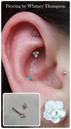 A day in the life.. - Fresh Rook using a 14k rose gold curve complete...