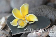 White_Wedding_Line_Icon_20